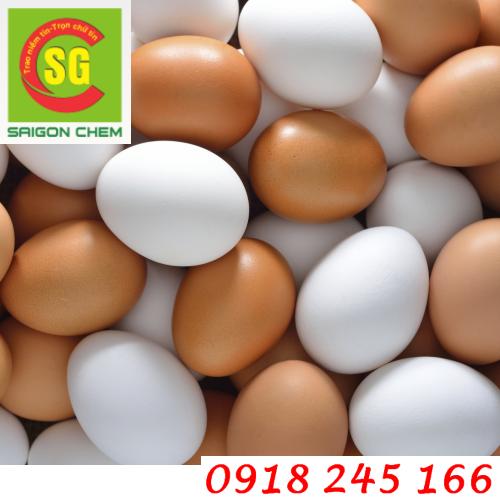 Bột Lòng Trắng Trứng/lòng đỏ trứng gà dùng trong thực phẩm